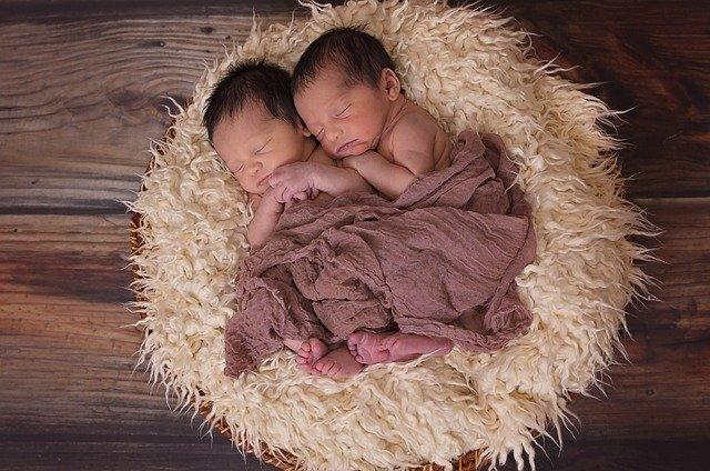 novorozená dvojčata