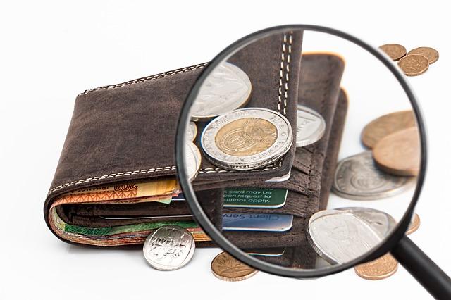peněženka hnědá